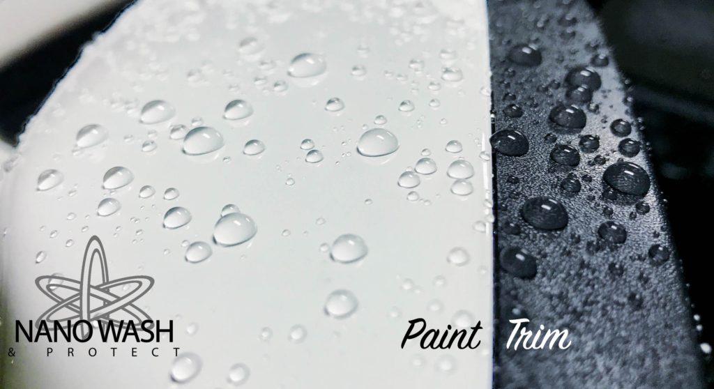White Paint & Trim
